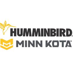 humming-bird-250