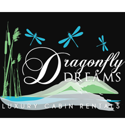 dragonfly-dreams-2